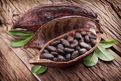 Cocoa pod on a dark wooden table.