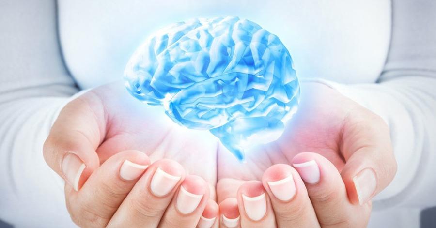 braininkcomplex-featured