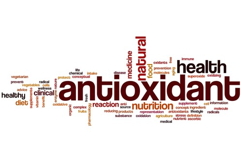 antioxidant text